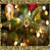 Обряд на кольцо на новогодней елке— к свадьбе